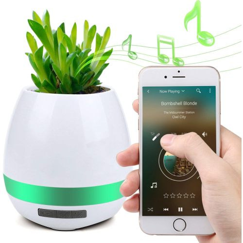 $5 (reg $30) Bluetooth Smart Music Flowerpot